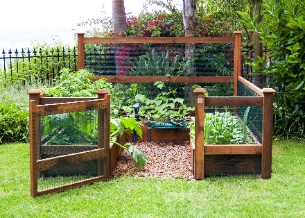 Snazzy Elevated Garden Planters Your House Design also Inspiring Vegetable Garden Bed Designs Plans additionally 3 Plans For Colorful Easy Care Spring Borders T37716 furthermore Watch additionally Gardening Better Health. on raised garden bed design plans