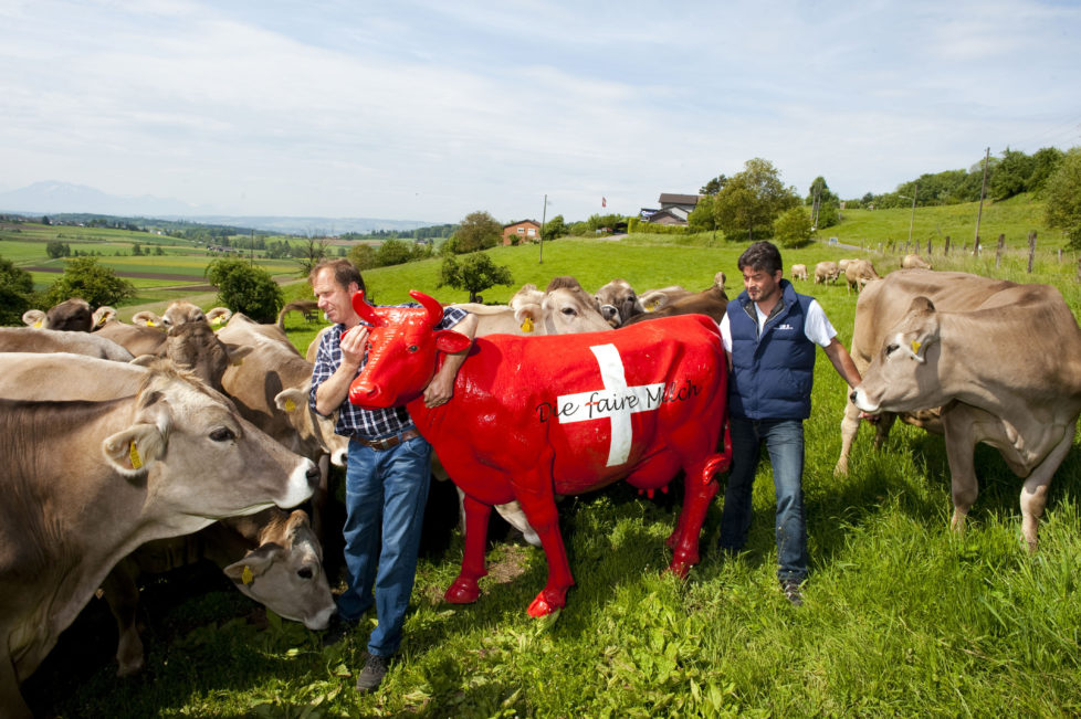 """BILD: RETO OESCHGER, BONSTETTEN, 19.05.2012 Zwei Bauern Werner Locher und Martin Haab wehren sich zum Thema """" Faire Milch """" Islisbergstrasse 8"""