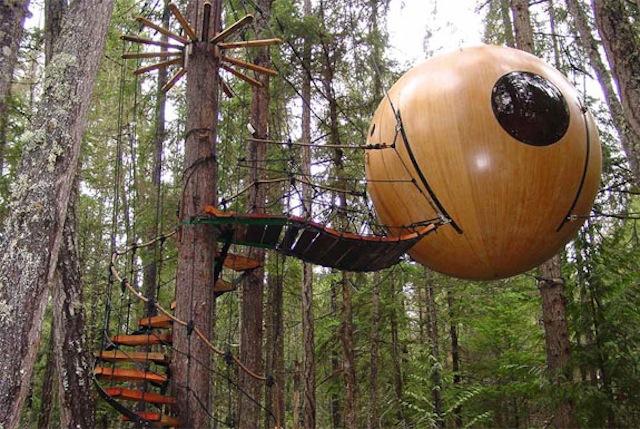 Baumkugel in Vancouver, Kanada (Foto: freespiritspheres.com)