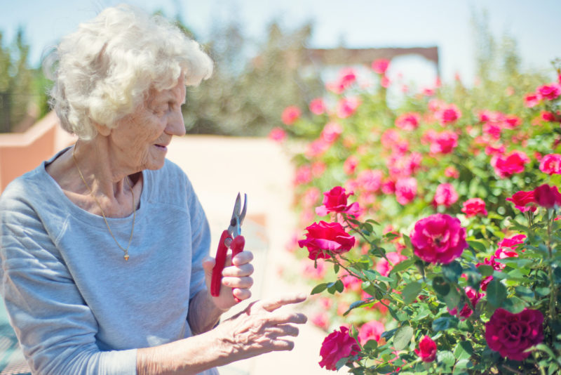 Beschnittene Renten: Frauen trifft der Koordinationsabzug ungleich härter. Foto: iStock