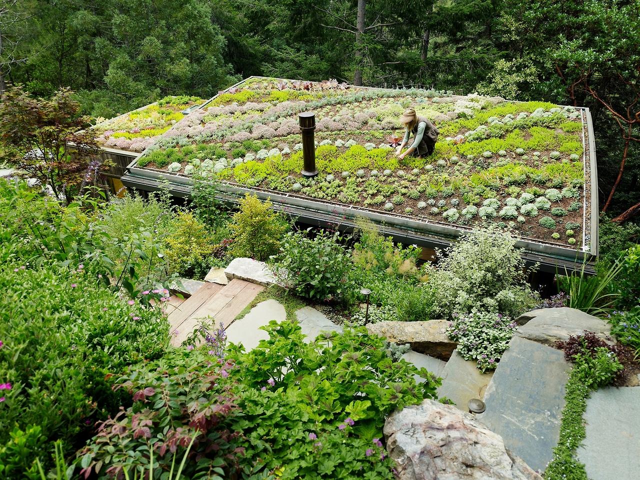kleine paradiese auf dem dach | sweet home, Gartengerate ideen