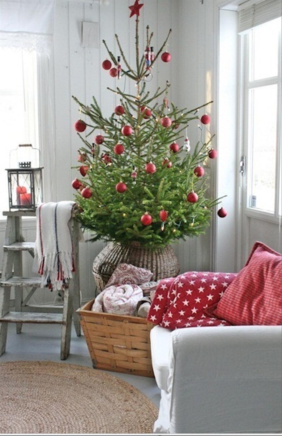 die 15 sch nsten weihnachtsb ume sweet home. Black Bedroom Furniture Sets. Home Design Ideas
