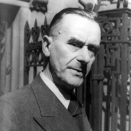 Ironische Reserve: Zum Stil von Thomas Mann