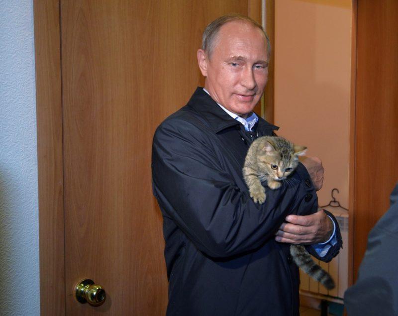Russian President Vladimir Putin holds a cat as he inspects housing built for victims of wildfires in the village of Krasnopolye, in Khakassia, a region in southeastern Siberia, Russia, Friday, Sept. 4, 2015. (Alexei Druzhinin/RIA-Novosti, Kremlin Pool Photo via AP)