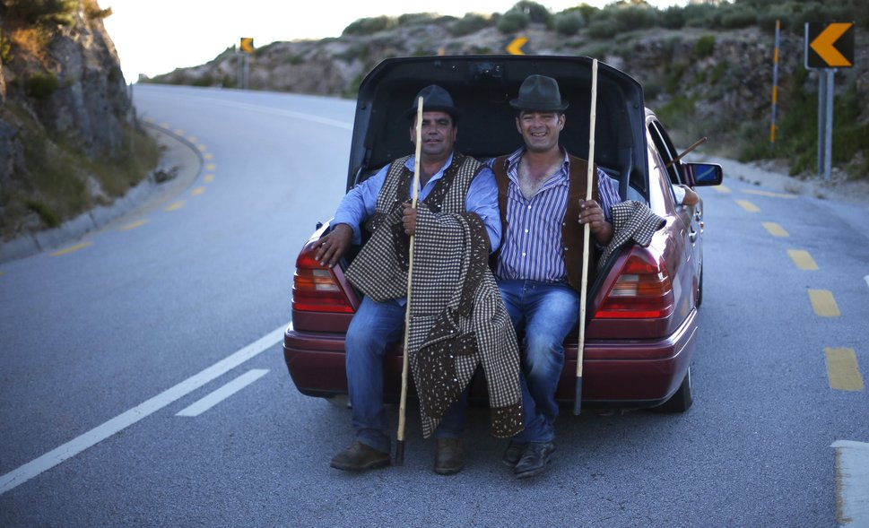 "Shepherds are given a lift by a car as they herd a flock to summer pastures in Serra da Estrela, near Seia, Portugal June 27, 2015. In late June, shepherds young and old in the Seia region of central Portugal start guiding sheep, goats and cattle to the Serra da Estrela, the country's highest mountains, in search of better pastures. There they stay until the end of September. Modern-day shepherds may have mobile phones to keep in touch with family and friends, but their lifestyle has changed little for centuries. The sound of cowbells and the bark of longhaired mastiffs starts early in the morning as the animals – often decorated with traditional woollen balls on their horns - are herded up steep, narrow paths. REUTERS/Rafael Marchante PICTURE 21 OF 23 FOR WIDER IMAGE STORY ""OLD TRADITIONS, NEW PASTURES"" SEARCH ""SERRA DA ESTRELA"" FOR ALL PICTURES"