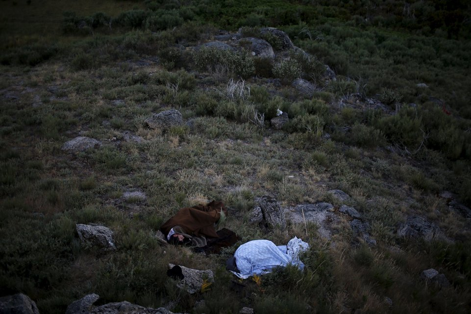 "Shepherds sleep outside as they herd their flock to summer pastures in Serra da Estrela, near Seia, Portugal June 28, 2015. In late June, shepherds young and old in the Seia region of central Portugal start guiding sheep, goats and cattle to the Serra da Estrela, the country's highest mountains, in search of better pastures. There they stay until the end of September. Modern-day shepherds may have mobile phones to keep in touch with family and friends, but their lifestyle has changed little for centuries. The sound of cowbells and the bark of longhaired mastiffs starts early in the morning as the animals – often decorated with traditional woollen balls on their horns - are herded up steep, narrow paths. REUTERS/Rafael Marchante PICTURE 18 OF 23 FOR WIDER IMAGE STORY ""OLD TRADITIONS, NEW PASTURES"" SEARCH ""SERRA DA ESTRELA"" FOR ALL PICTURES"