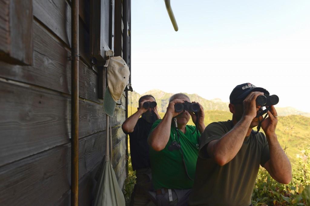 Col de Bretolet - Vogelberingungsstation der Vogelwarte Sempach - Helfer halten nach Vögeln Ausschau