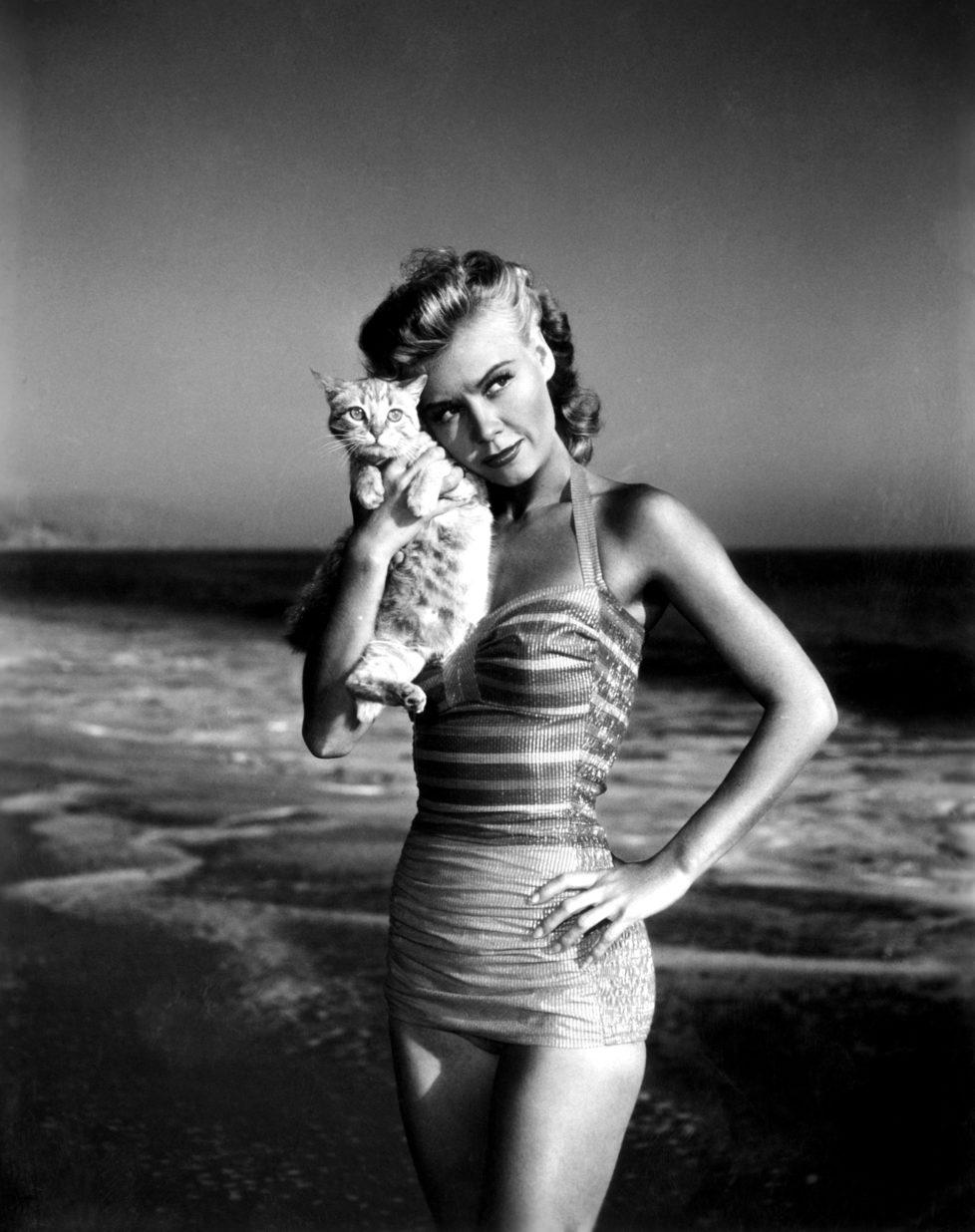 Vera-Ellen posing with kitten on beach, ca. 1940s (KEYSTONE/Everett Collection/) IM BILD / BILDSEITE LIEBEN MICH MEINE KATZEN BUND 23.7. TAGI 26.7.