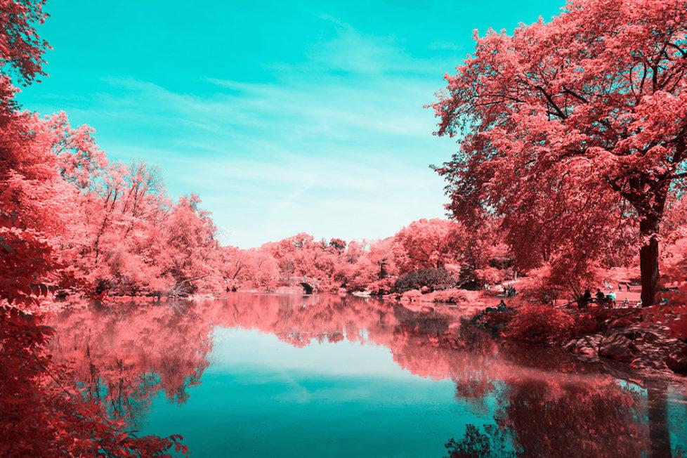 Infrared Take on New York's Central Park (c) Paolo Pettigiani