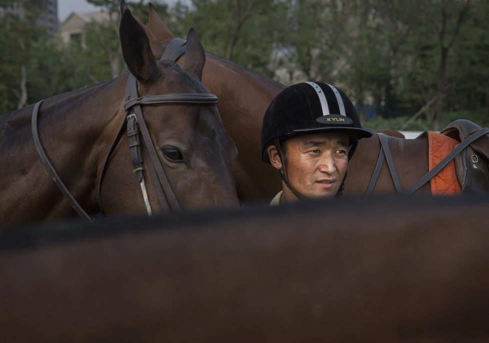 """TIANJIN, CHINA - JULY 17: A Chinese horse trainer stands with polo horses during an exhibition match between Chinese players from the Metropolitan Polo Club team and visiting players from the United States and Britain during the intervarsity tounrament at the Tianjin Goldin Metropolitan Polo Club on July 17, 2016 in Tianjin, China. China's rising affluence has nurtured growing interest in polo and other past-times regarded as noble or prestigious by the country's elite. Clubs and international-size polo fields have been built in various cities including Beijing and Shanghai, and on the outskirts of Tianjin, where membership at the exclusive Goldin Metropolitan, China's largest polo club, is by invitation-only and fees can be significant for polo team owners. Increasingly, wealthy Chinese parents are choosing polo and other equestrian activities for their children as a way to bolster their credentials for admission to top-tier universities in the United States and the United Kingdom. While the so-called """"sport of kings"""" became a mainstay in Hong Kong during the era of British rule, polo is a relatively new sport to mainland China. Professional polo players are frequently flown in from countries such as New Zealand and Argentina in order to field competitive matches. Many of the polo clubs in China are tied to luxury real estate developments. (Photo by Kevin Frayer/Getty Images)"""