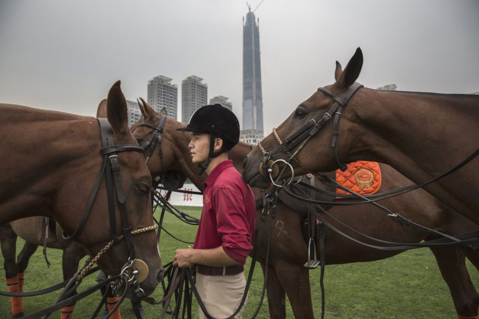 """TIANJIN, CHINA - JULY 16: A Chinese horse trainer stands with polo horses during an intervarsity tournament match at the Tianjin Goldin Metropolitan Polo Club on July 16, 2016 in Tianjin, China. China's rising affluence has nurtured growing interest in polo and other past-times regarded as noble or prestigious by the country's elite. Clubs and international-size polo fields have been built in various cities including Beijing and Shanghai, and on the outskirts of Tianjin, where membership at the exclusive Goldin Metropolitan, China's largest polo club, is by invitation-only and fees can be significant for polo team owners. Increasingly, wealthy Chinese parents are choosing polo and other equestrian activities for their children as a way to bolster their credentials for admission to top-tier universities in the United States and the United Kingdom. While the so-called """"sport of kings"""" became a mainstay in Hong Kong during the era of British rule, polo is a relatively new sport to mainland China. Professional polo players are frequently flown in from countries such as New Zealand and Argentina in order to field competitive matches. Many of the polo clubs in China are tied to luxury real estate developments. (Photo by Kevin Frayer/Getty Images)"""