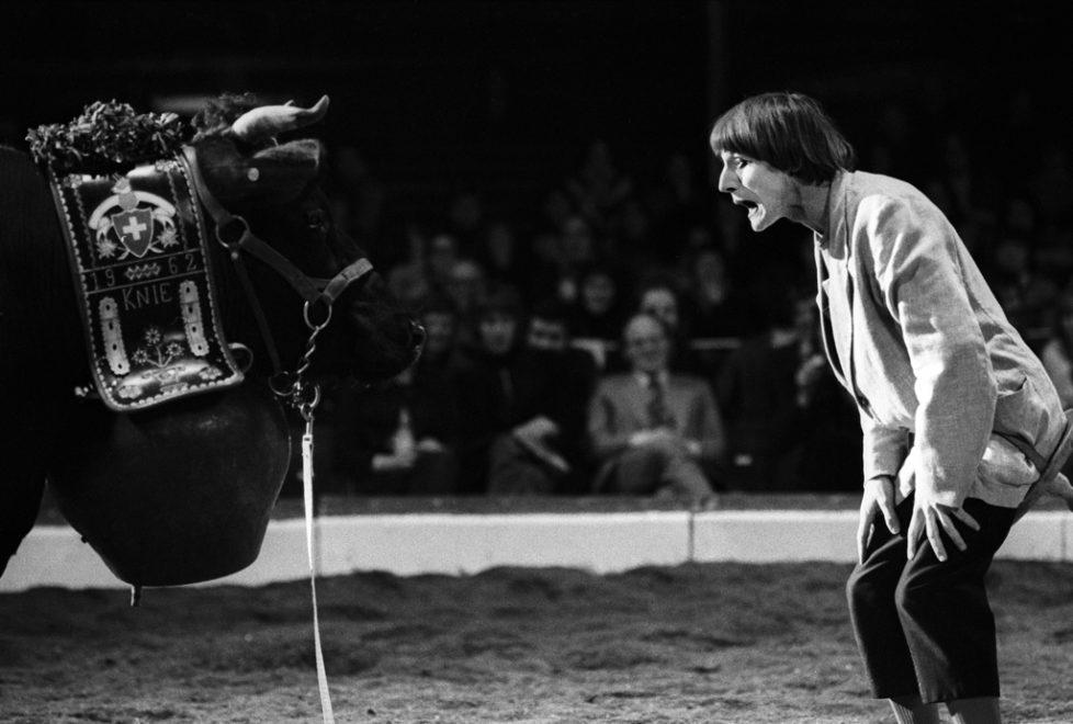 Der Clown Dimitri mit einer Kuhnummer im Zirkus Knie, aufgenommen 17. Maerz 1973. (KEYSTONE/Str)