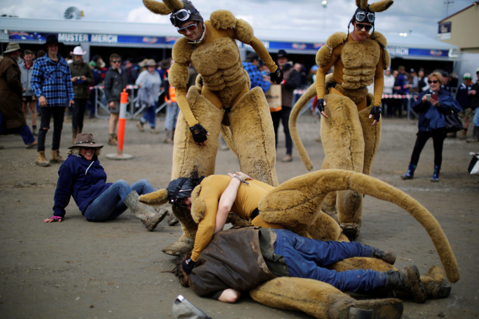 "One of several men dressed as a kangaroo is tackled by a drunk man at the Deni Ute Muster in Deniliquin, New South Wales, Australia, September 30, 2016. REUTERS/Jason Reed SEARCH ""UTE CULTURE"" FOR THIS STORY. SEARCH ""THE WIDER IMAGE"" FOR ALL STORIES."