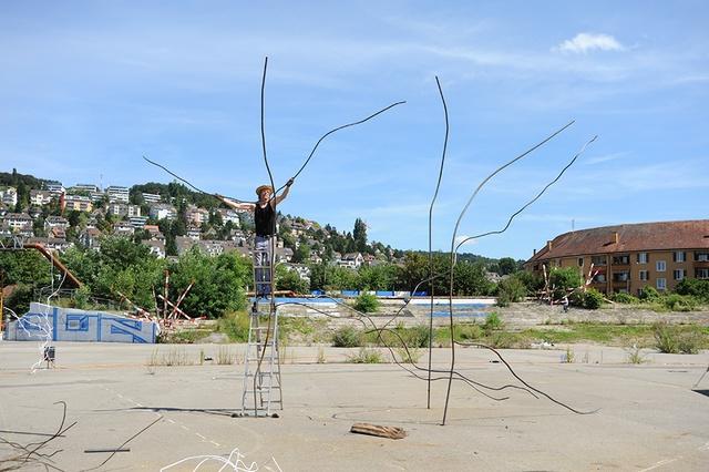 Lukas Hofkunst; Work In Progress; Skulturenpark; Armierungseisen, Farbe; 2014